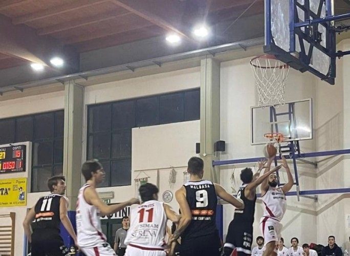 Basket, Serie B: che Pallacanestro Senigallia Goldengas!