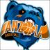 """Anzola Basket  - Serie""""C"""" Gold : definito il programma allenamenti e le prime amichevoli."""