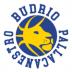 Pallacanestro Budrio 289 : Si ricomincia!!!!!