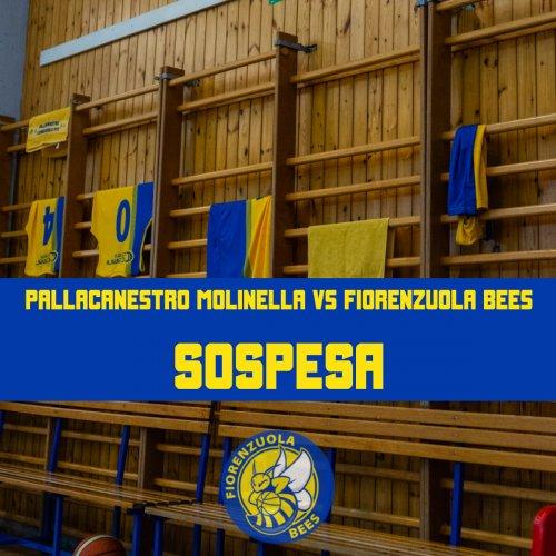 Pallacanestro Molinella vs Fiorenzuola Bees non si giocherà: ufficiale la sospensione della gara