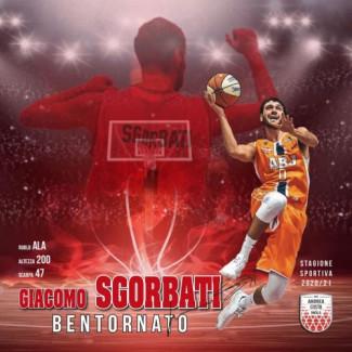 Andrea Costa Basket Imola : Ritorna Giacomo Sgorbati