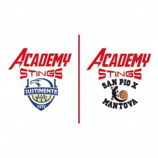Academy Stings , iniziati i due progetti di C Gold e C Silver