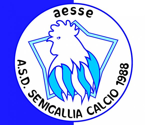 Mercato: Il Senigallia Calcio rinforza il centrocampo