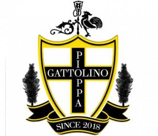 Il GS Pioppa-Gattolino torna a sudare