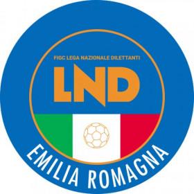 FIGC CRER: Il TFN ha respinto il ricorso dell'ex presidente Paolo Braiati
