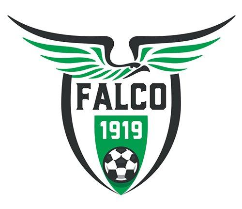On line la rosa 2019-2020 della A.S.D. Falconarese 1919