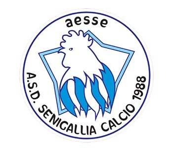 Pubblicata la rosa 2020-21 dell' A.S.D. Senigallia Calcio