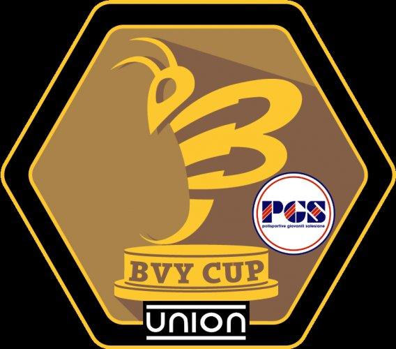 BVOLLEY ROMAGNA: Si annuncia carica di grandi novità la BVY CUP della stagione  2018/2019 !