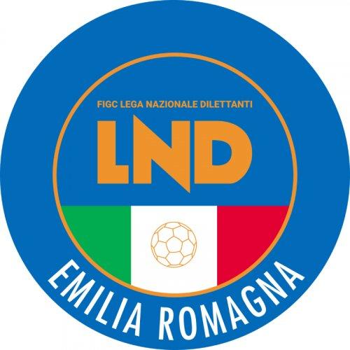 FIGC CRER: Udienza impugnazione Assemblea Elettiva posticipata al 25/02