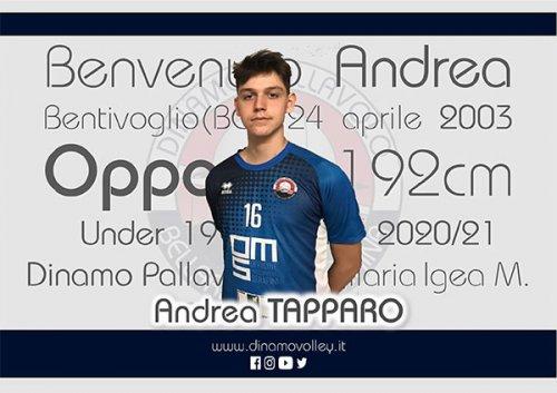 Per la Dinamo Pallavolo Bellaria, arriva Andrea Tapparo