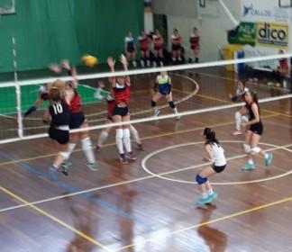 Luci e ombre, nelle formazioni di pallavolo del Cus Bologna ai campionati universitari