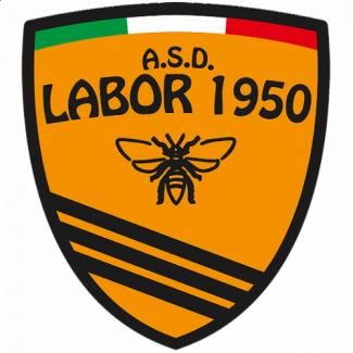 Pubblicata la rosa 2020-21 dell'A.S.D. Labor 1950