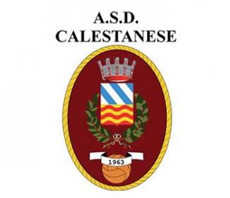 On line la rosa 2019-2020 della Calestanese A.S.D.