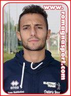 Domenico Arpino