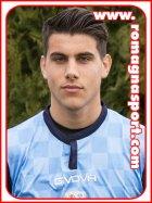 Romeo Bertani